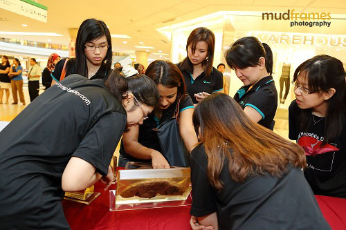 World Hepatitis Day 2012 at One Utama Shopping Mall