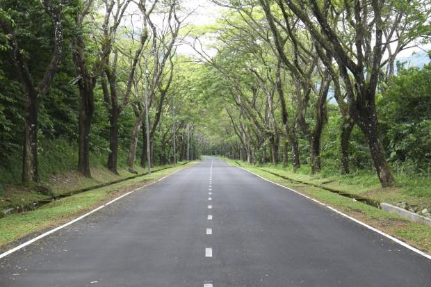 En route to Templer Park Rainforest Retreat