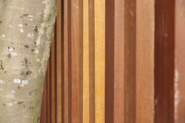 Wooden railing at Templer Park Rainforest Retreat