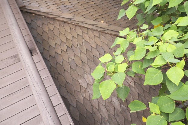 Wooden shingles at Templer Park Rainforest Retreat