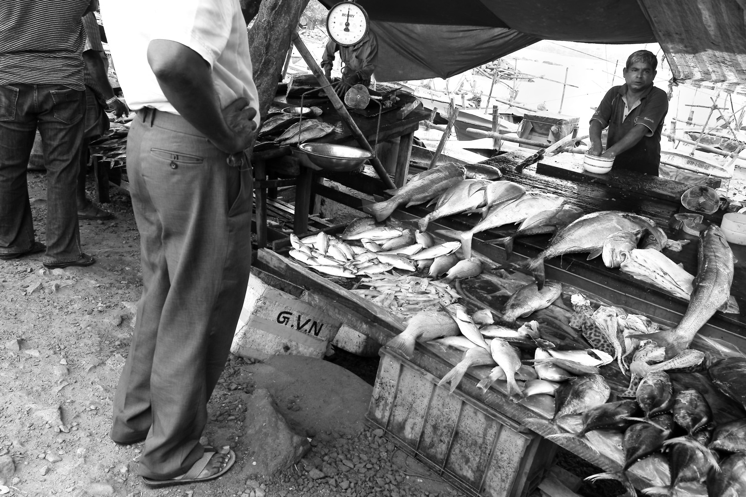 Fishmonger at vicinity of Galle Fort, Sri Lanka
