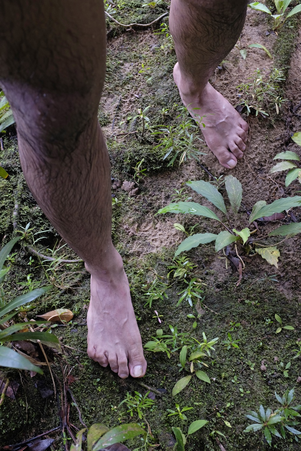 Bare feet on jungle floor